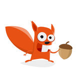 Funny cartoon squirrel holding a nut Royalty Free Stock Images