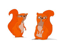 Funny cartoon squirrels Stock Image