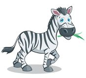 Funny Cartoon Style Zebra Big Eyes Vector Illustration Isolated on White. All elements are grouped together logically and easy to edit stock illustration