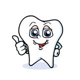 Funny cartoon tooth. Cartoon tooth thumbs up, vector Stock Image