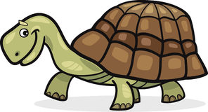 Funny cartoon turtle Stock Photography
