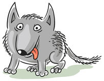 Funny cartoon wolf or dog. Funny wolf or dog cartoon character, isolated Royalty Free Stock Photo