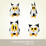 Funny Cartoony night owls Stock Images