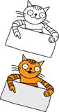Funny cat with blank paper Royalty Free Stock Photos