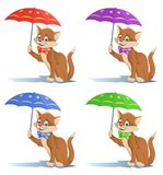 Funny cat in a bow tie with umbrella. Stock Photo