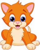 Funny cat cartoon. Illustration of funny cat cartoon Stock Photography
