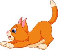 Funny cat cartoon Royalty Free Stock Photos