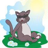 Funny cat  cat basks in the sun. Illustration for web Royalty Free Stock Image