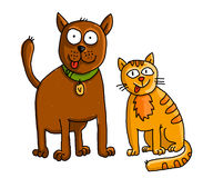 Funny cat and dog. House pets dog and a cat illustration