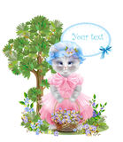 Funny cat dressed in  the pink frock Stock Photo