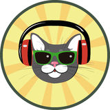 Funny cat with headphones and sunglasses Stock Image