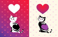 Funny cat with a heart Royalty Free Stock Images