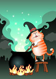 Funny cat сooking a potion in a cauldron Stock Photos