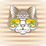 Funny cat portrait with  cool sunglasses, hand drawn graphic, animal illustration, t-shirt design Royalty Free Stock Photos