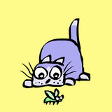 Funny cat preys on the beetle. Vector illustration. Royalty Free Stock Photo