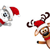 Funny cat and Reindeer on white background Stock Images