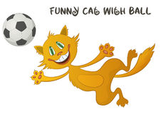 Funny Cat with Soccer Ball Royalty Free Stock Photo