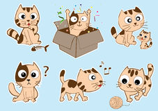 Funny cat vector illustration Royalty Free Stock Photography