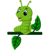 Funny caterpillar runs. On a tree branch Royalty Free Stock Image