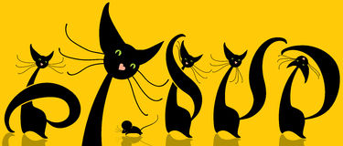 Funny cats. Cute illustration with funny black cat and mouse scrolling Stock Photography