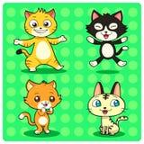 Funny Cats Stock Photo