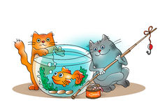 Funny cats catch goldfish from the aquarium. On white background Royalty Free Stock Images