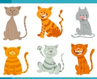 Funny cats and kittens animal characters set. Cartoon Illustration of Funny Cats or Kittens Animal Characters Set Stock Images