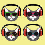Funny cats in music  headphones and sunglasses. Set of funny cats with headphones and sunglasses Royalty Free Stock Photography