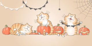 Funny cats preparing decorations for halloween Royalty Free Stock Photos