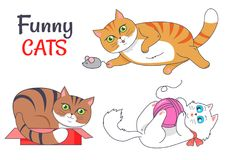 Funny Cats Sleeping in Red Box Playing Grey Mouse. Funny cats sleeping in red box, playing with grey mouse, cute kitten and woolen thread ball vector Stock Photos