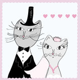 Funny cats wedding Royalty Free Stock Photo