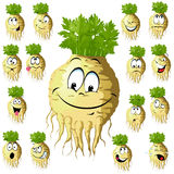 Funny celery cartoon. Celery cartoon with many expressions isolated on white background Royalty Free Stock Photography