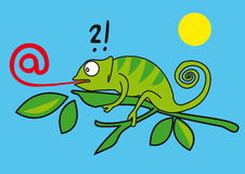 A funny chameleon Stock Images
