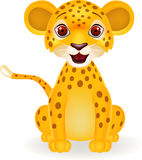 Funny cheetah smiling Royalty Free Stock Photography