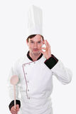 Funny chef posing Stock Photos