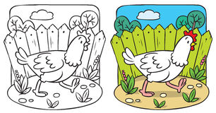 Funny  chicken coloring book Royalty Free Stock Photos