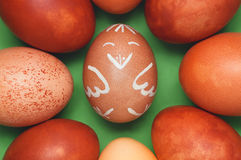 Funny chicken Easter egg in the middle of other eggs against green background Royalty Free Stock Photo