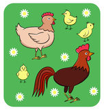 Funny chicken family. Vector illustration of a funny cartoon chicken family on the green background with flowers Stock Image