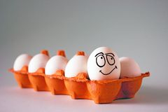 Funny chicken white eggs with faces in an egg cell. stock photo