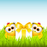 Funny chickens with a gift Royalty Free Stock Photos