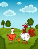 Funny chickens Stock Photo