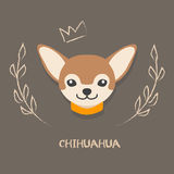 Funny chihuahua vector illustration. Cute cartoon  portrait of a dog. Royalty Free Stock Photos