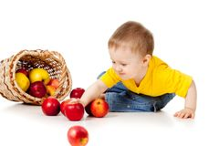 Funny child with basket filling apples Royalty Free Stock Photo
