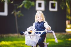 Funny child Caucasian girl blonde near a purple bike with a basket and a zebra toy in an outside park on a green lawn. Grass cart at home royalty free stock image
