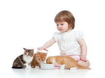 Funny child feeding attractive kitten Stock Photos