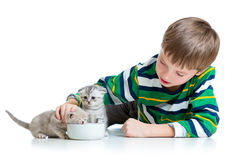 Funny child feeding attractive kitten Stock Photography