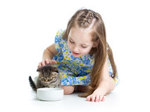 Funny child feeding attractive kitten Royalty Free Stock Images