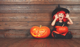 Funny child girl in witch costume  for Halloween with pumpkin Ja Stock Images