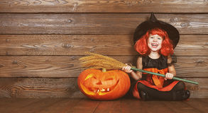 Funny child girl in witch costume  for Halloween with pumpkin Ja Stock Photography