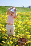 Funny child on green meadow playing in cow Royalty Free Stock Photos